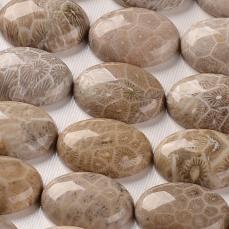 krizantémkő/korall kövület ovális kabochon